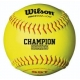 Bucket of Practice Softballs